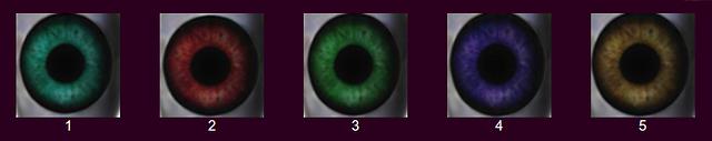 Verfügbare Augenfarben für den Silikon-Kopf